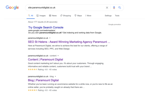 An example of SEO page index results