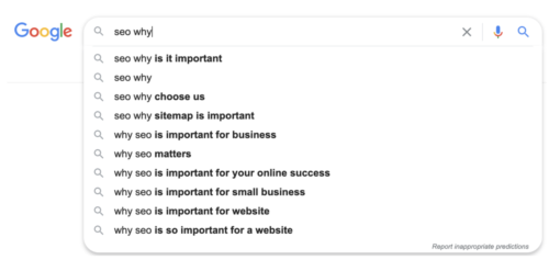 Google search results for SEO question